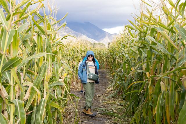 Kellie in a Corn Maze