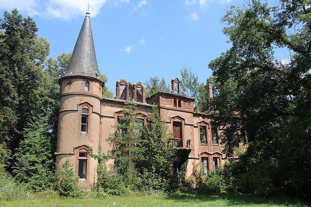 Le château au bois poussant #1