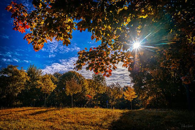 Bavarian fall