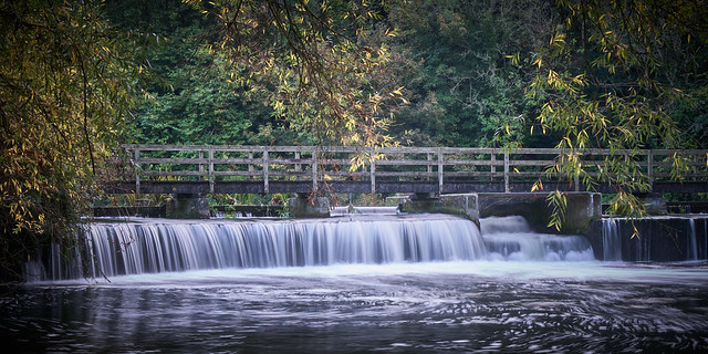 The weir at Charlton-All-Saints (Explore)