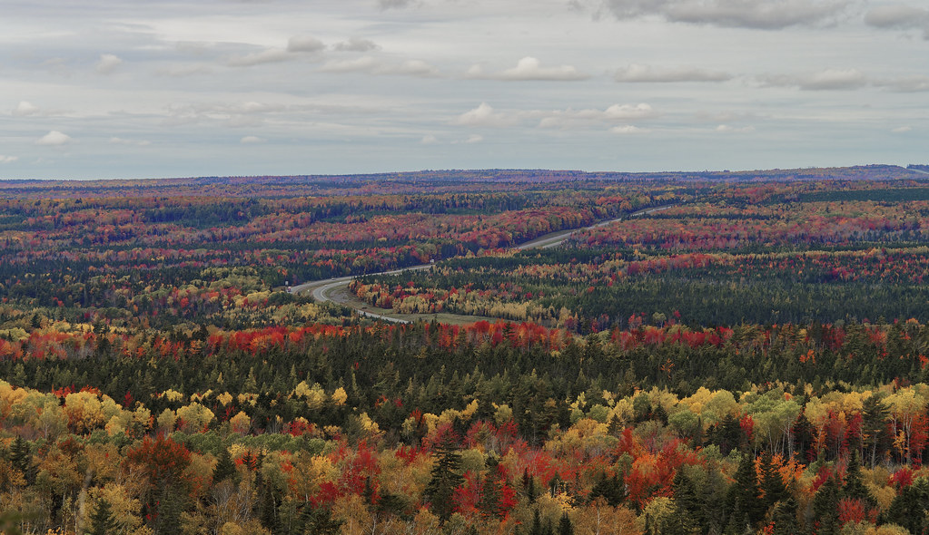 Fall colours along the Trans Canada Highway, Claremont, NS
