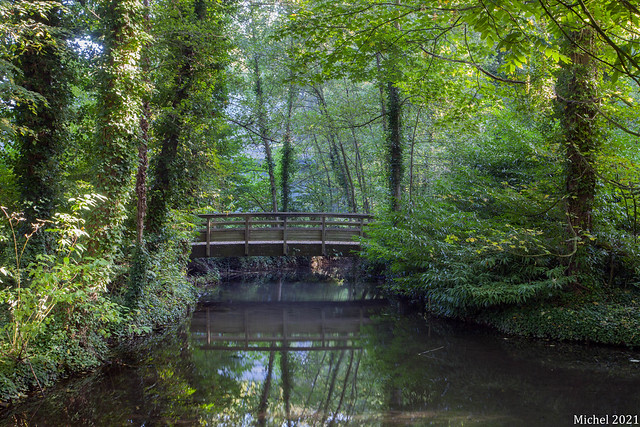 petit pont de bois , small wooden bridge , liten trebro