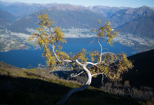 autumn @Monte Gambarogno