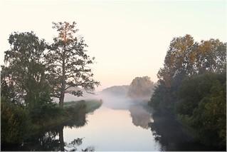 Morgens im Spreewald
