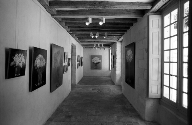 Art Space  (Nikon FM3A / Delta 100)