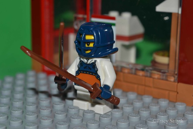 Ninja (282/365)