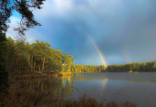 Rainbow visit