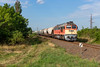 MAV 628 311 + lege Transcereales trein