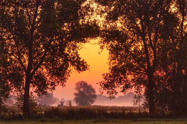 Autumn Dawn • Herbstdämmerung
