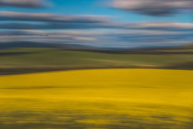 Landscape from a train  DSC_1745