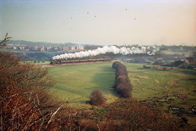 76079 and Burrs as it used to be!,......(Re-scan).