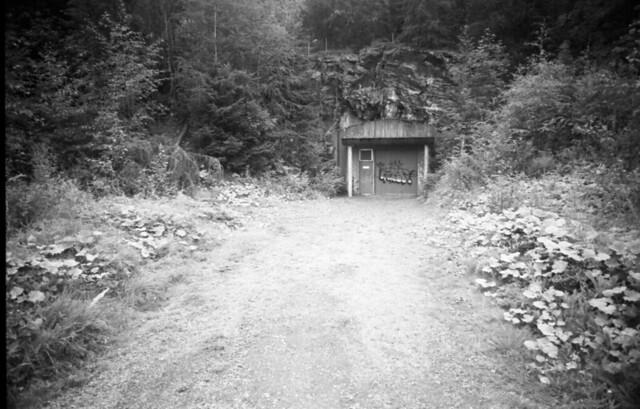 Secret Forest Bunker (2021)