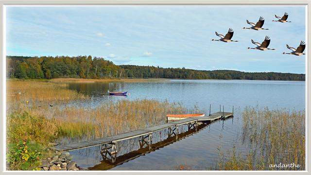 Around the lake Stensjön (4)