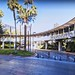 The Flamingo Hotel Google Maps (2)