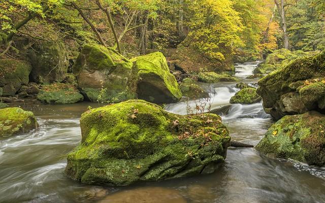 *Irreler Wasserfälle @ das verlorene Wanderparadies*
