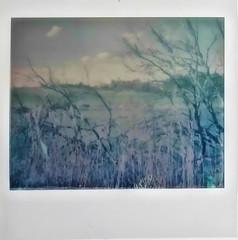 Navaseca en Polaroid 1