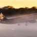 Hamburg Airport: Eurowings (EW / EWG) |  Livery: Europa Park Livery |  Airbus A320-214 A320 | D-ABDQ | MSN 3121