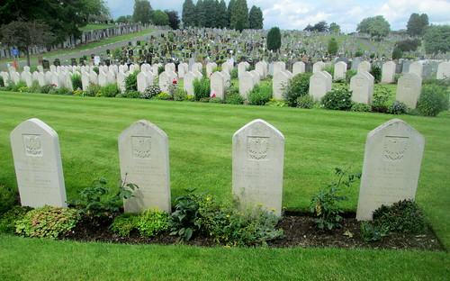 Eight More Polish War Graves