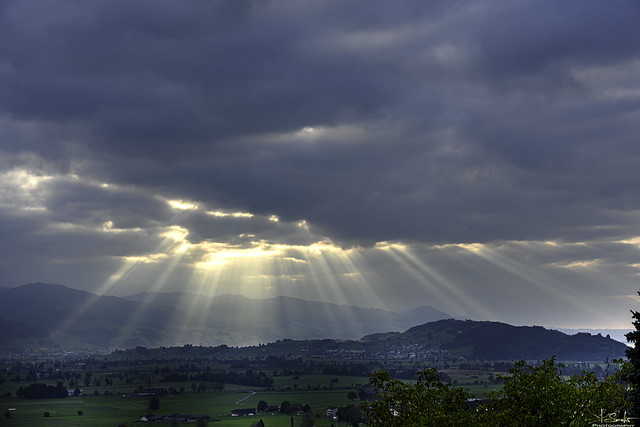 Sunbeams - Kaltbrunn - St.Gallen - Switzerland