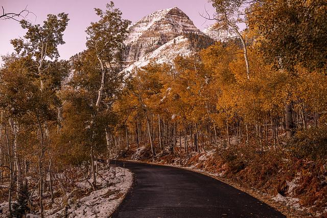 An Alpine Loop Morning