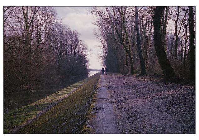 Early morning walk
