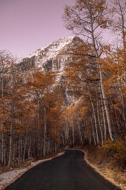 Beautiful Autumn Mountain Morning
