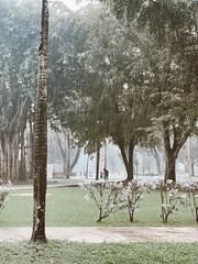 Du00eda lluvioso en la IUPI