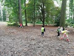 L1B Week van het bos - leerwandeling