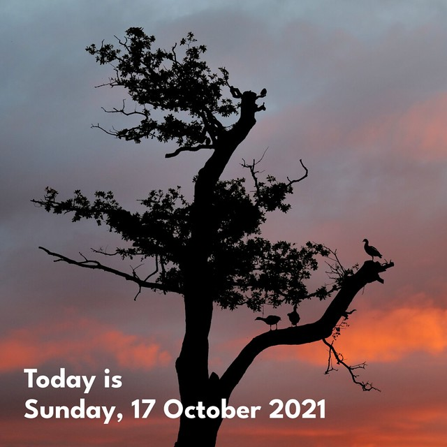Today is Sunday, 17 October 2021