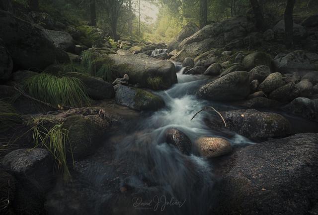 Lozoya River
