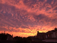 This mornings Sky