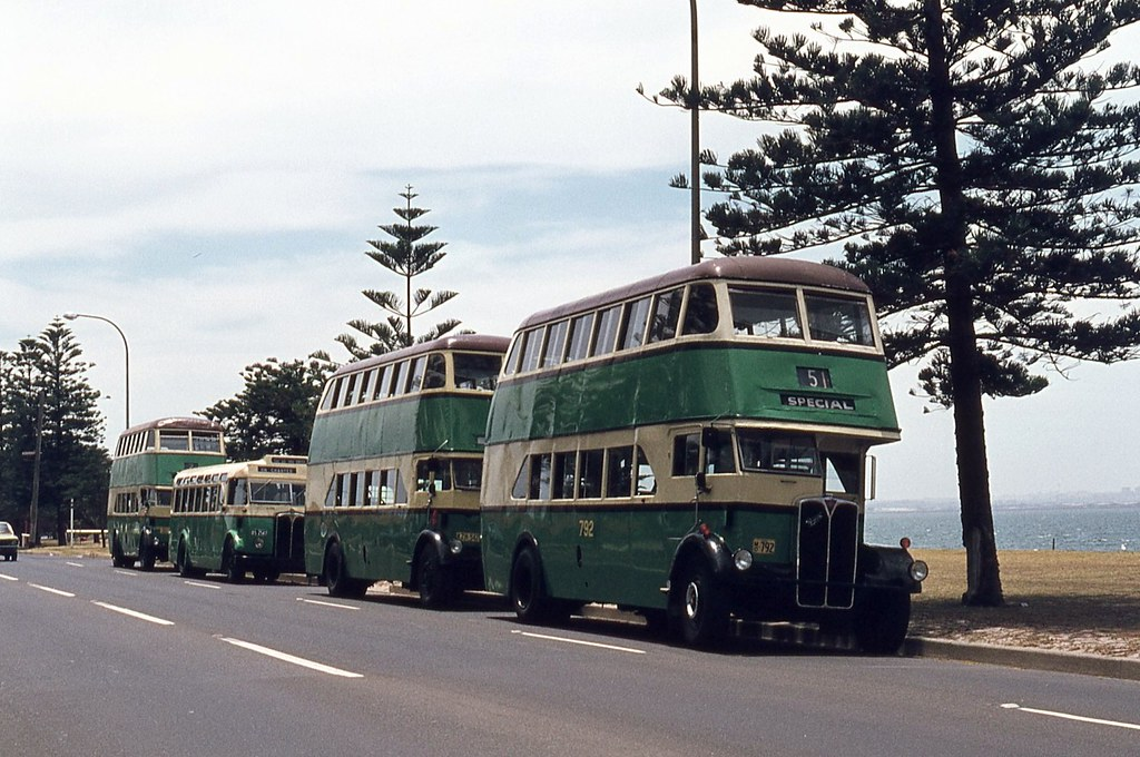 Preserved Deckers