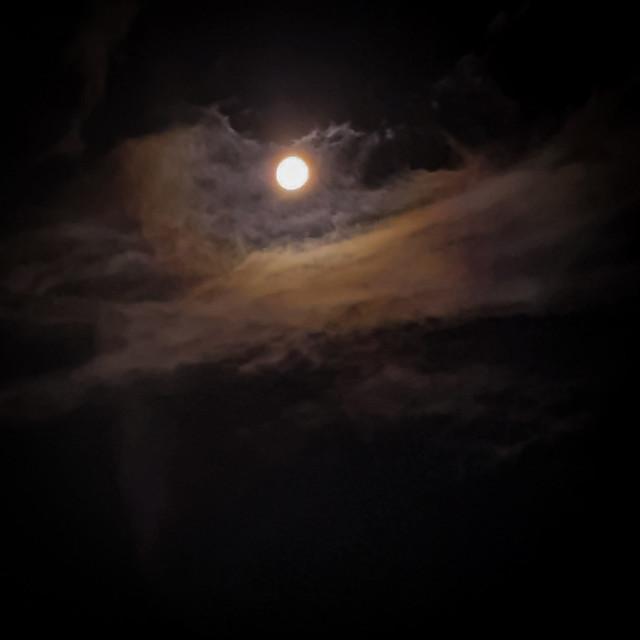 13th moon night