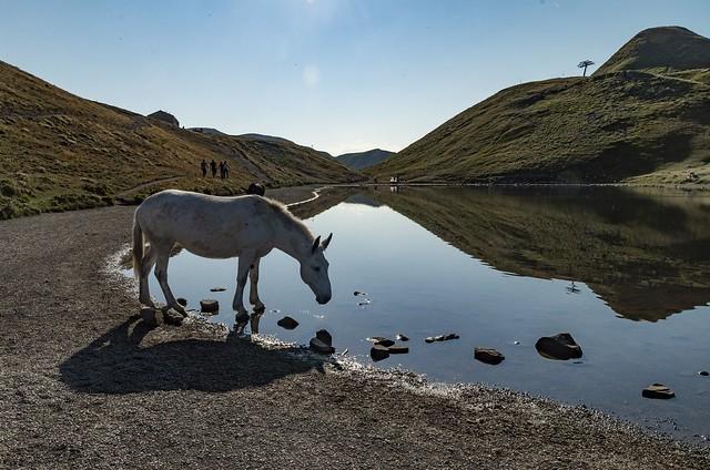 Lago Scaffaiolo al mattino in agosto