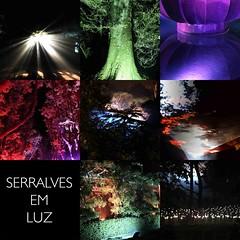 Serralves_Luz