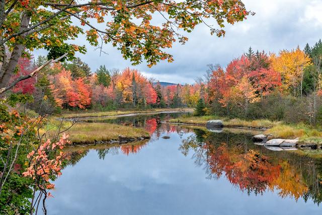 Maine Pond In Autumn