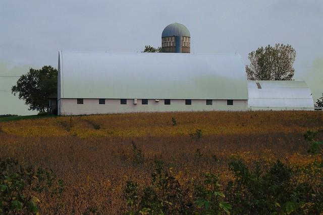 Big White Barn
