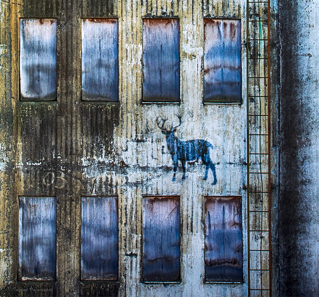 Decayed Factory Wall