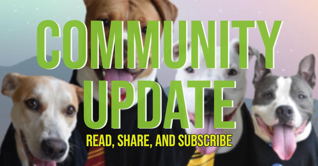 Community Update Newsletter
