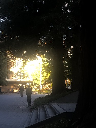Reflecting the Sun