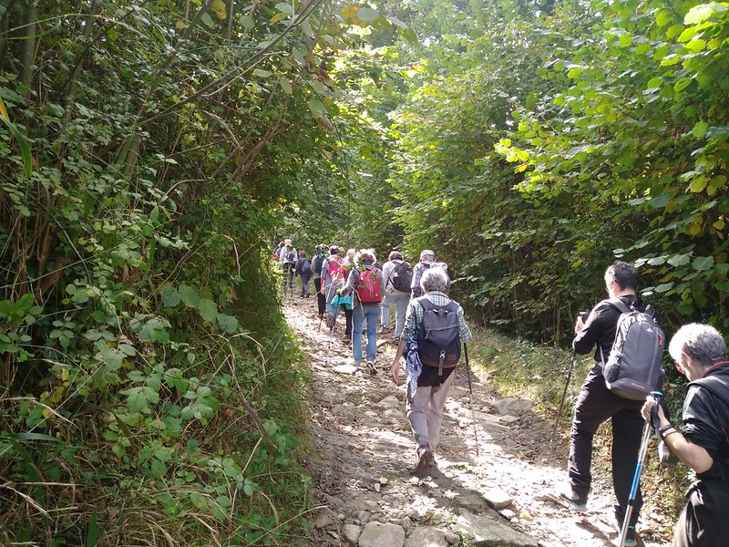 Sortida de Senderisme - La Via Annia, la calçada romana del Capsacosta