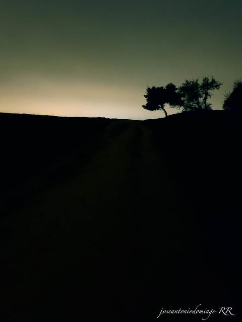 Ascenso en la noche