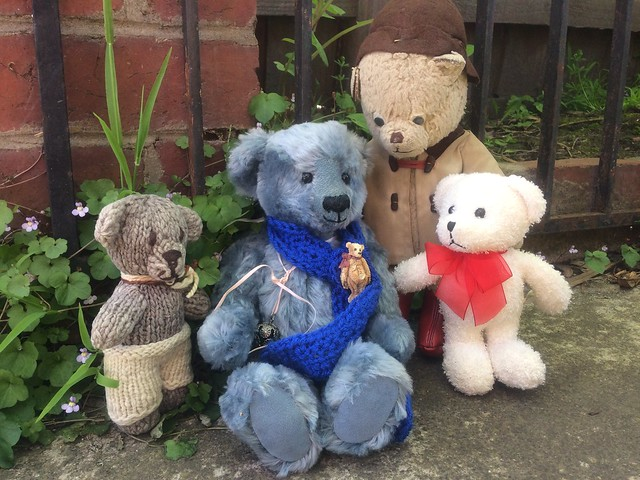 Paddington and Scout Help Jago on a Point of Confusion