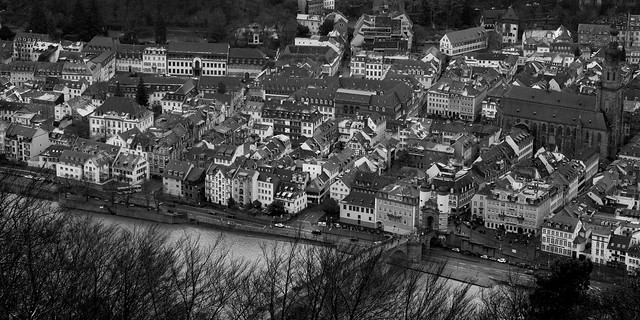Heidelberg from Above - IMG_0580