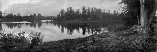 Willamette River View