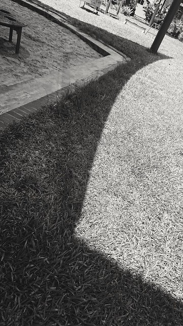 292: sheltering curve
