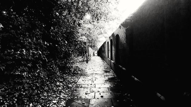 Autumnal Mystery.....