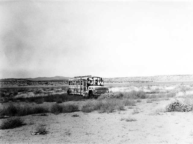 DFW Bus