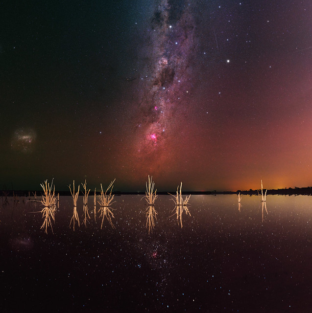 Crux & Carina at Lake Mears, Western Australia