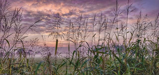L'autunno sulla campagna lombarda